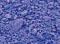 Pigment Sennelier Cobalt blue 130g -F  307