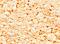 Pigment Sennelier Bright yellow 80g -B  511