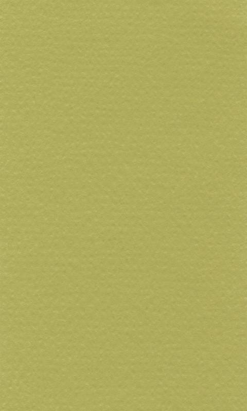 Färgat papper Lanacolour 160g 50-p A4 Pistazie