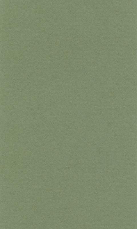 Färgat papper Lanacolour 160g 50-p A4 sap green