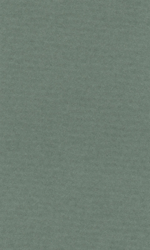 Färgat papper Lanacolour 160g 50-p A4 sage