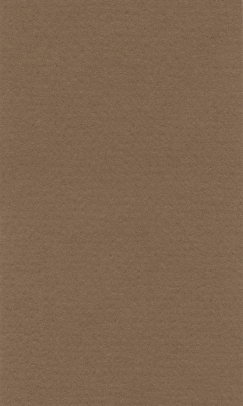 Färgat papper Lanacolour 160g 50-p A4 bisque