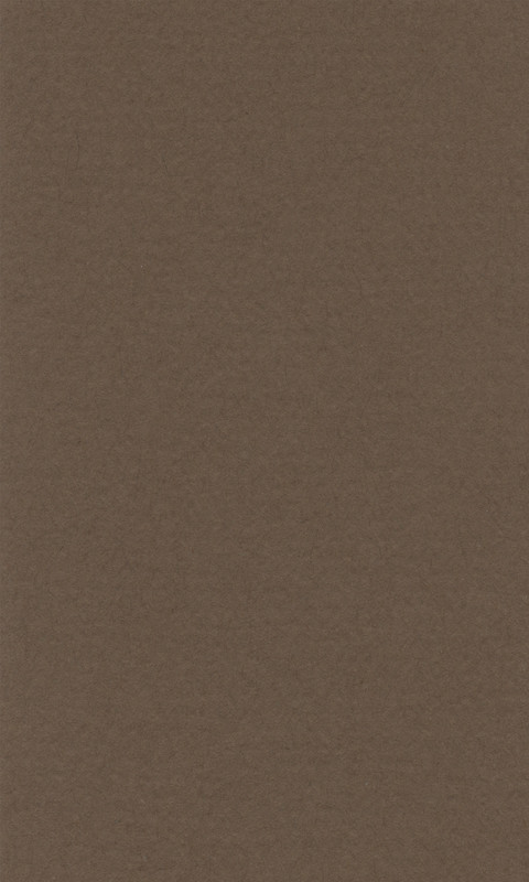 Färgat papper Lanacolour 160g  500x650  (25F) dark brown