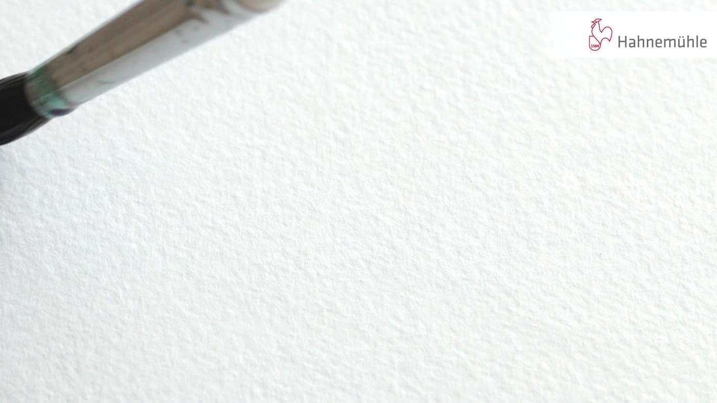 Akvarellpapper Hahnemühle Harmony 300g Cold Pressed 50x65cm (10F)
