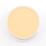 PanPastel Orange Tint  280,8 (3F)