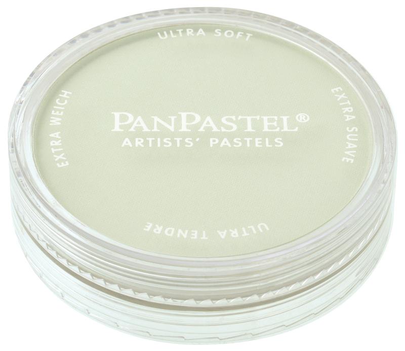 PanPastel Chromium Oxide Green Tint 660,8 (3F)