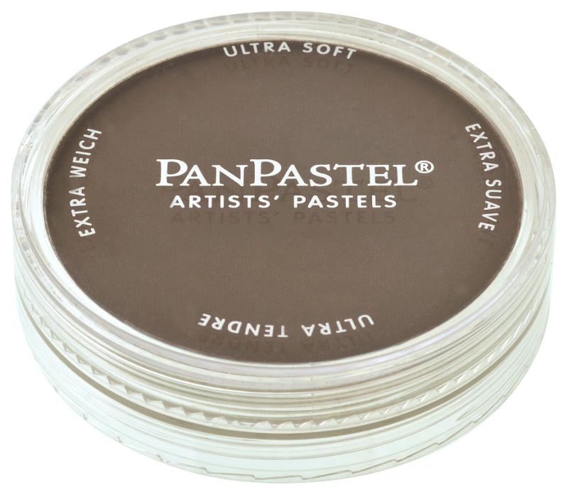 PanPastel Raw Umber Shade 780,3 (3F)