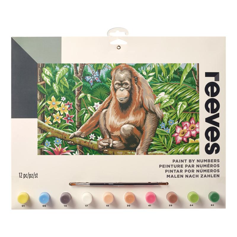 Måla efter nummer Reeves 30x40cm Orangutang PL131 (6F)