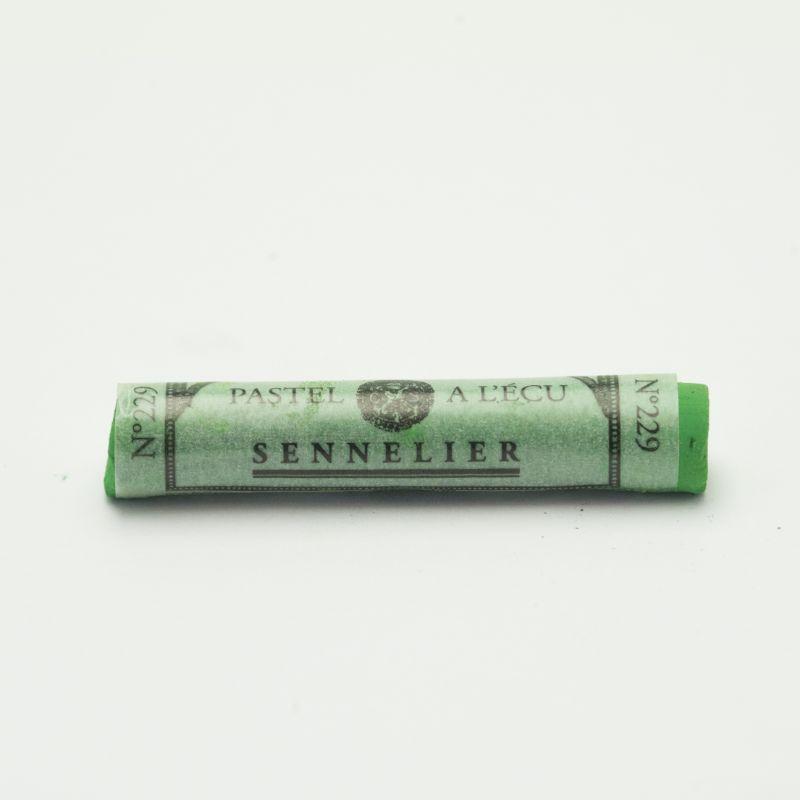 Mjukpastell Sennelier Chromium Green 229 (3F)