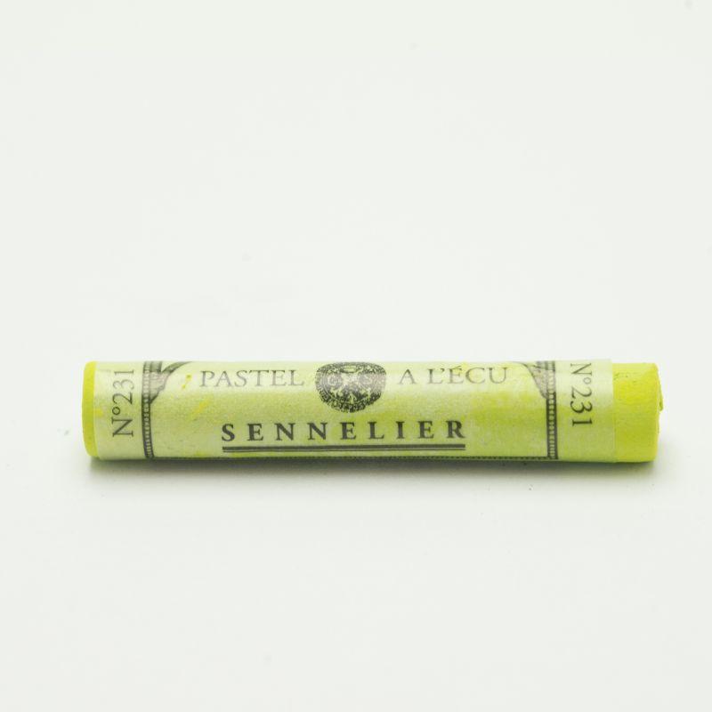 Mjukpastell Sennelier Chromium Green 231 (3F)