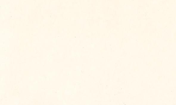 Tusch Sennelier Ink 30ml Opaque White (3F)