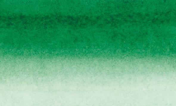 Tusch Sennelier Ink 30ml Deep Green (3F)
