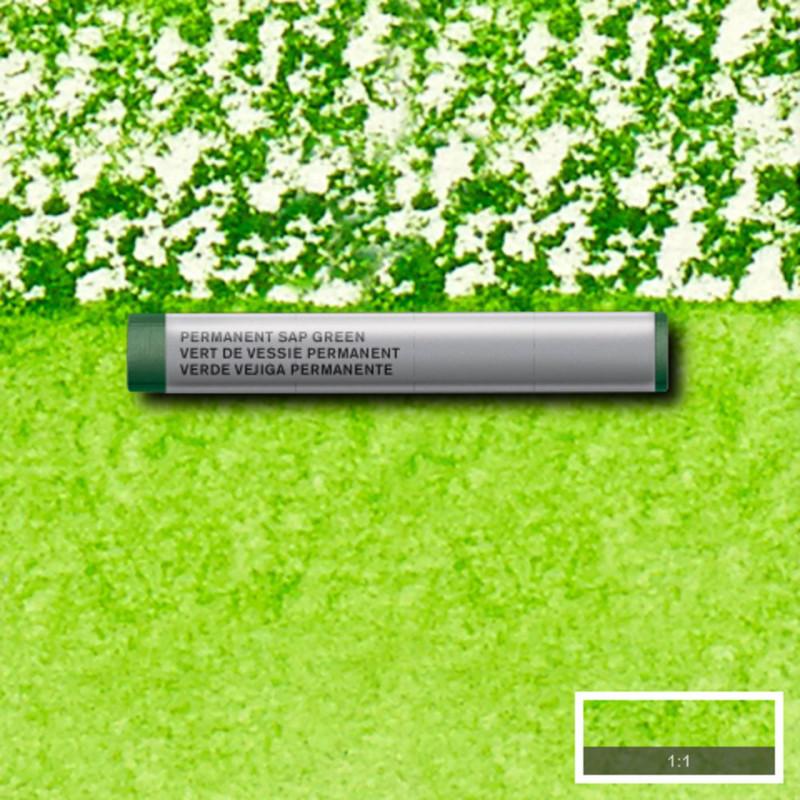Akvarellkrita Winsor & Newton Prof.  Permanent Sap Green 503 (3F) S1