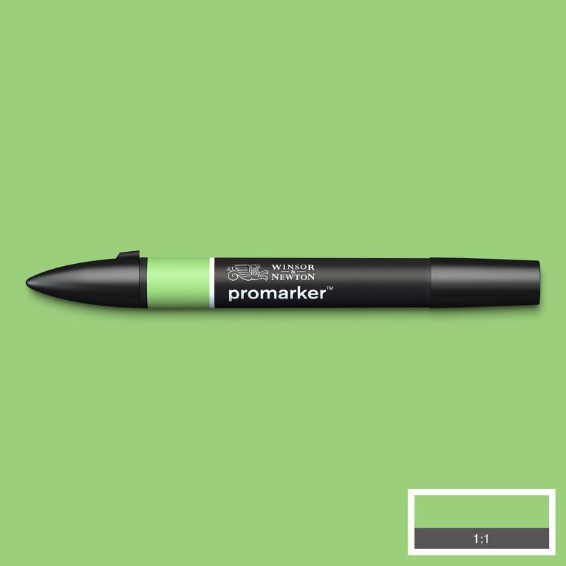 Promarker Winsor & Newton Apple (G338)